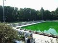 piscinaverde