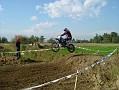 moto borgaro