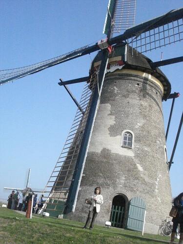 I Mulini a Vento di Kinderdijk - dal basso