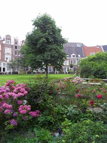 Amsterdam Beghine il cortile