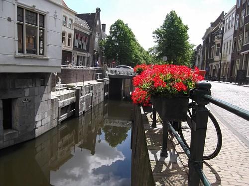 Gouda canale fiori rossi