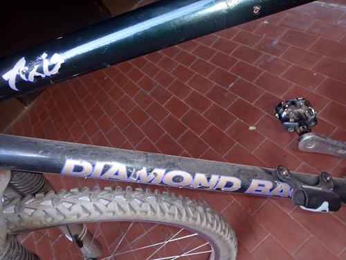 Luca vs DiamondBack Axis e Bianchi Thomisus P5170077-vi
